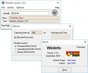 WinInfo